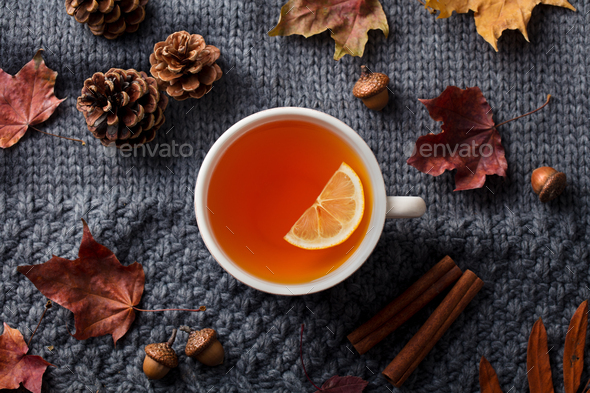 Tea Cup with Autumn Leaves. Grey Background. Top view. - Stock Photo - Images