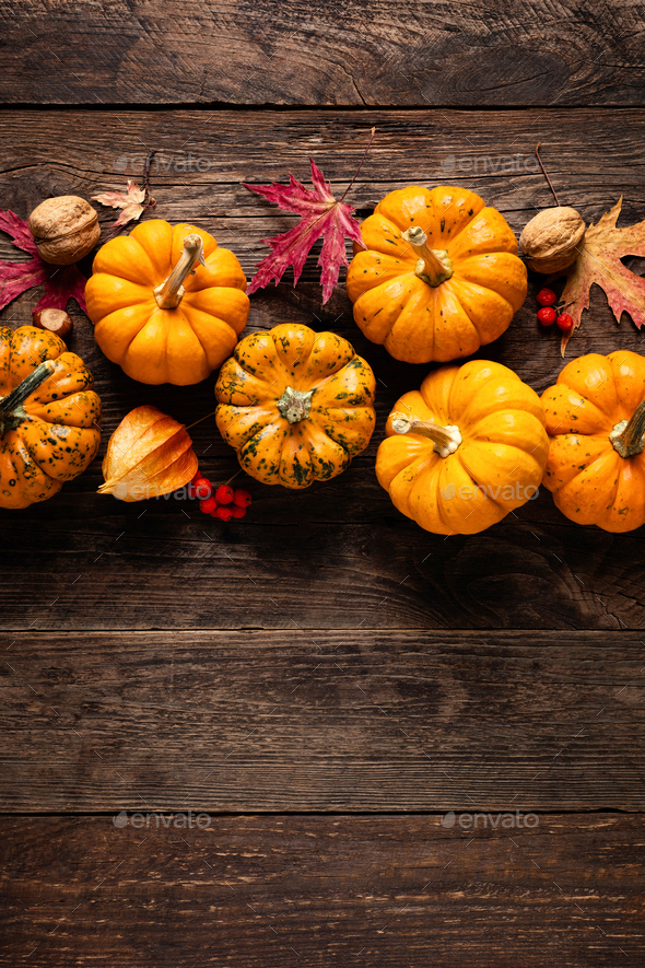 Autumn pumpkins with fall leaves, berries on wood background. Thanksgiving day or halloween holiday - Stock Photo - Images