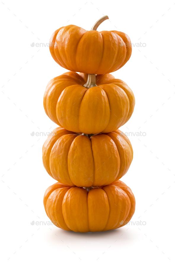 Miniature pumpkins - Stock Photo - Images