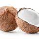 Coconut fruit - PhotoDune Item for Sale