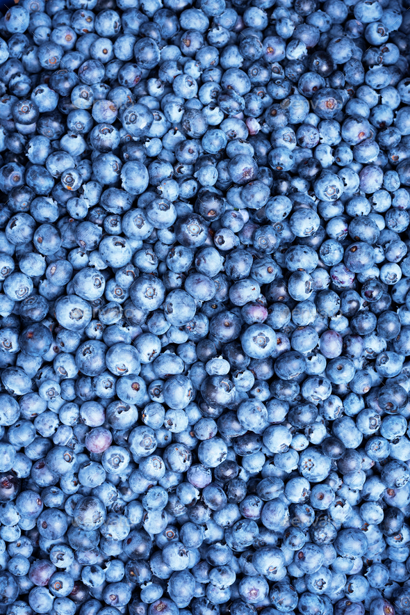 Fresh blueberries background with copy space for your text. Border design. Vegan and vegetarian - Stock Photo - Images