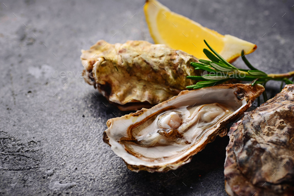 Fresh oysters with lemon and rosemary - Stock Photo - Images