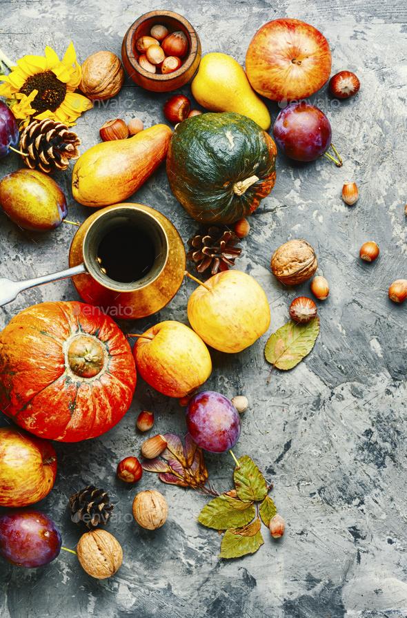Autumn harvest still life - Stock Photo - Images