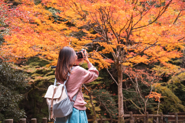Young woman traveler taking a picture of beautiful nature in autumn season, Travel lifestyle concept - Stock Photo - Images