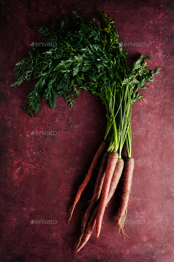 Bunch of fresh organic carrots - Stock Photo - Images