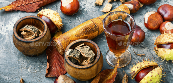 Chestnut in herbal medicine - Stock Photo - Images