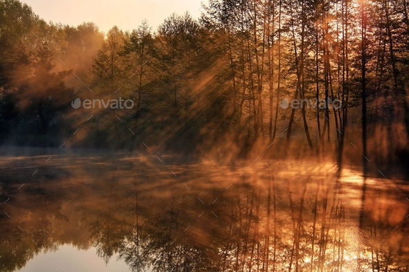 The first rays of the rising sun at misty river - Stock Photo - Images