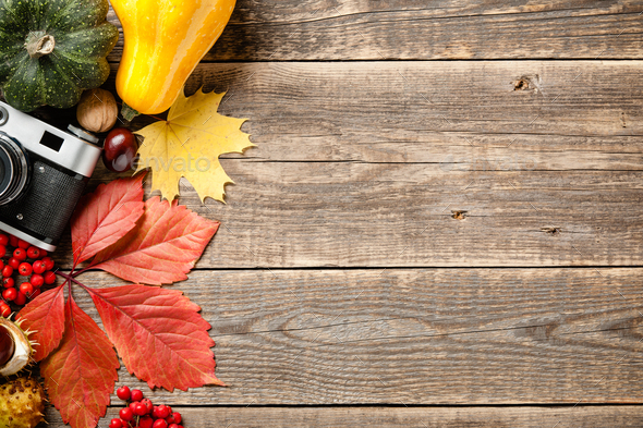 Autumn holiday concept.Thanksgiving background - Stock Photo - Images