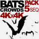 Bats Animation Pack - VideoHive Item for Sale