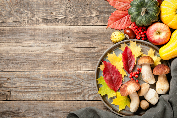 Autumn holiday concept. Thanksgiving background - Stock Photo - Images