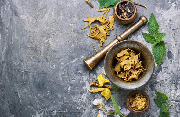 Herbal naturopathic medicine - Stock Photo - Images