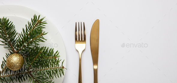Fir tree twig on white set of dishes, white background - Stock Photo - Images