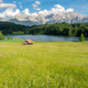 Alpine Lake and flowering meadow in Bavaria - PhotoDune Item for Sale