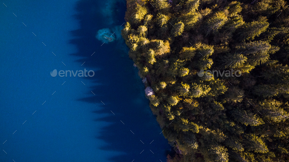 Forest Edge Over Lake. Top Down Drone Aerial Image. Vibrant Autu - Stock Photo - Images