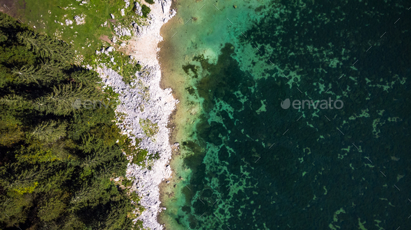 Forest Edge at Lake with Rocky Shore. Aerial Drone Top Down View - Stock Photo - Images
