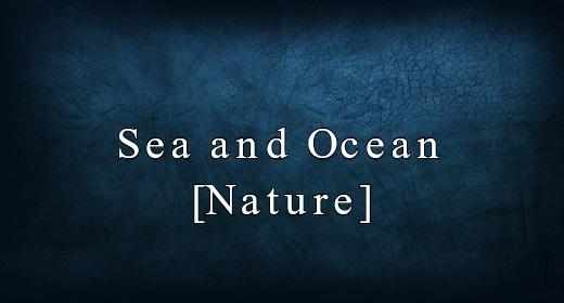Sea and Ocean [Nature]