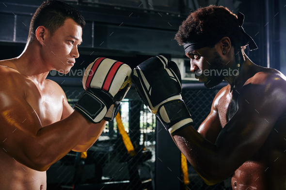 Muay Thai competition - Stock Photo - Images