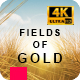 Fields of Gold - Lyrics Music Video - VideoHive Item for Sale