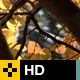 Fall Leaves Series - Clip 004 - VideoHive Item for Sale