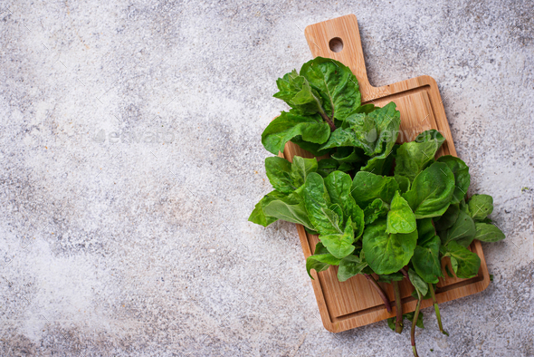 Bunch of fresh mint on cutting board - Stock Photo - Images