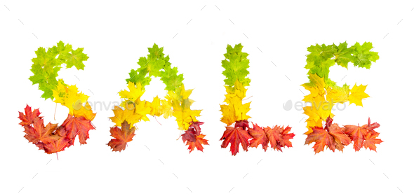 leaves in shape of word LIFE on white background - Stock Photo - Images