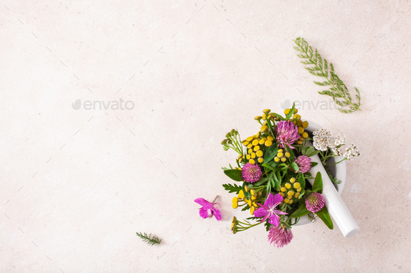medical flowers herbs in mortar. clover milfoil tansy rosebay - Stock Photo - Images