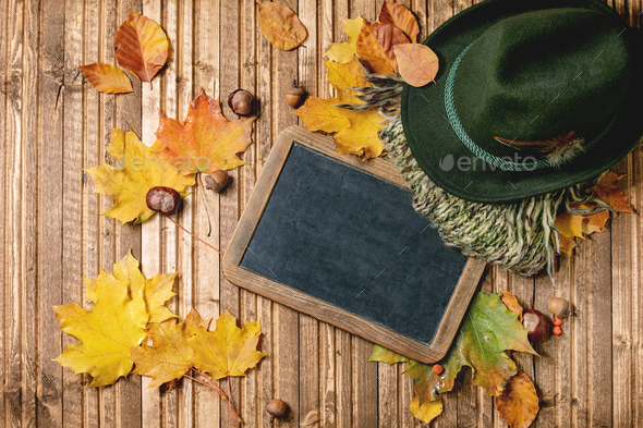 Variety of autumn leaves - Stock Photo - Images