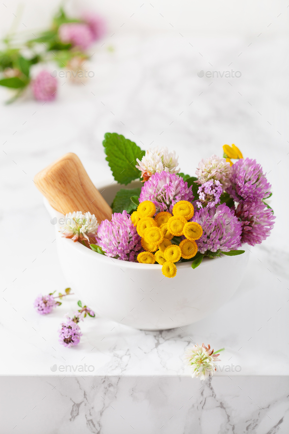 medical flowers herbs in mortar. alternative medicine. clover ta - Stock Photo - Images