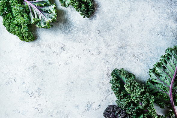 Freshly cut purple Kale leaves on a light textured background - Stock Photo - Images