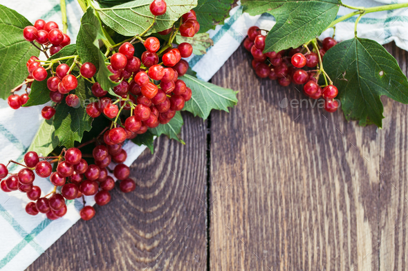 Viburnum berries with bunches. Viburnum on wooden background - Stock Photo - Images