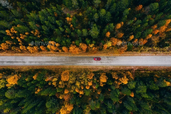 Aerial view of rural road in yellow and orange autumn forest in rural Finland. - Stock Photo - Images