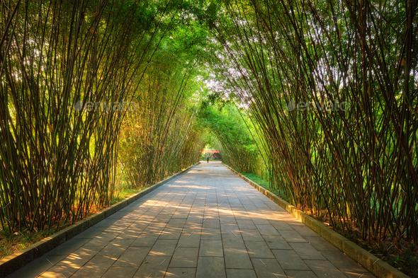 Wangjianglou park. Chengdu, Sichuan, China - Stock Photo - Images
