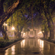 Guangzhou People's Park with fog at night, China - PhotoDune Item for Sale