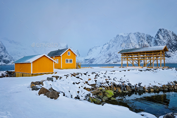 Rorbu house and drying flakes for stockfish cod fish in winter. Lofoten islands, Norway - Stock Photo - Images