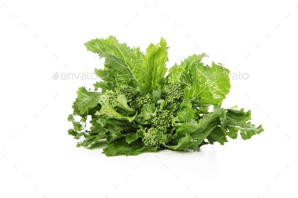 Broccoli Rabe Isolated - Stock Photo - Images