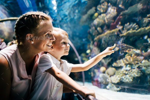 Mother and son watching sea life in oceanarium - Stock Photo - Images