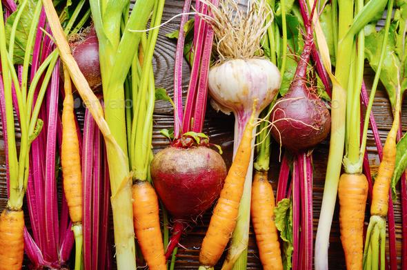 Vegetarian background of fresh organic beetroots green garlic an - Stock Photo - Images