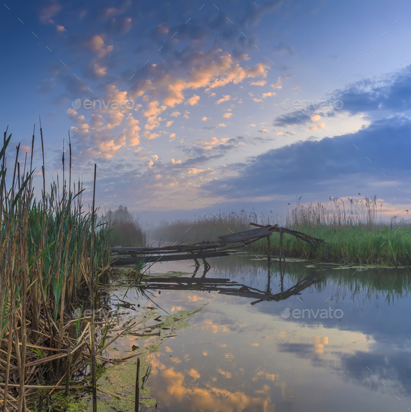 Foggy dawn on the river - Stock Photo - Images