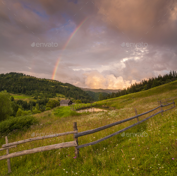 Flowery meadow in the mountains on the background of cloudy sky and rainbow - Stock Photo - Images