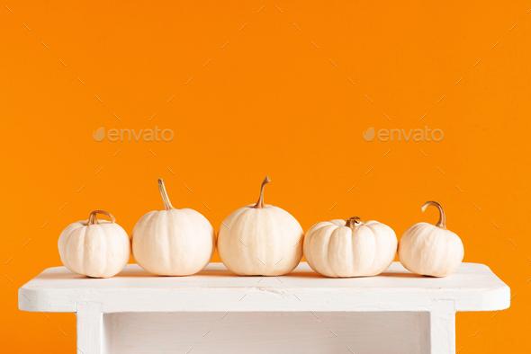 Fresh Autumn Pumpkins on the White Table - Stock Photo - Images