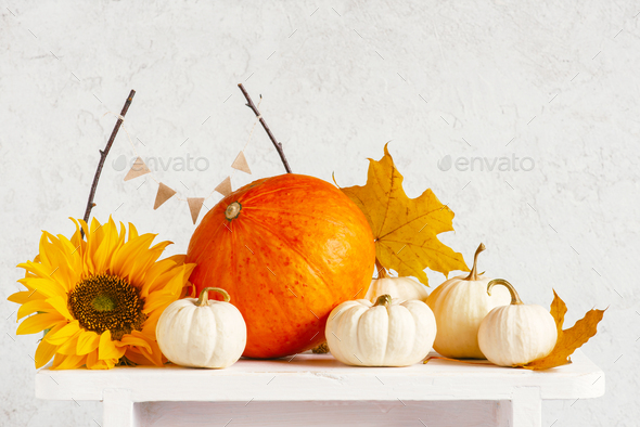 Autumn Composition of Pumpkins on the White Table - Stock Photo - Images