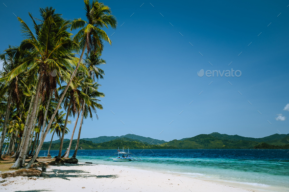 El Nido Palawan Philippines Coconut Palm Trees On Sandy Beach And Lonely Filippino Banca Boat In