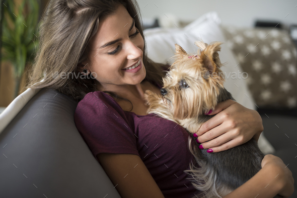 Woman embracing her little puppy - Stock Photo - Images