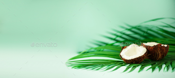 Coconut over tropical green palm leaves on turquoise background. Copy space. Pop art design - Stock Photo - Images
