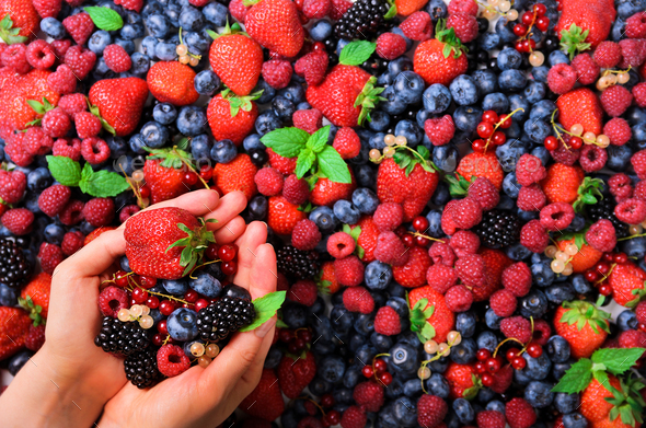 Woman hands holding organic fresh berries against the background of strawberry, blueberry - Stock Photo - Images