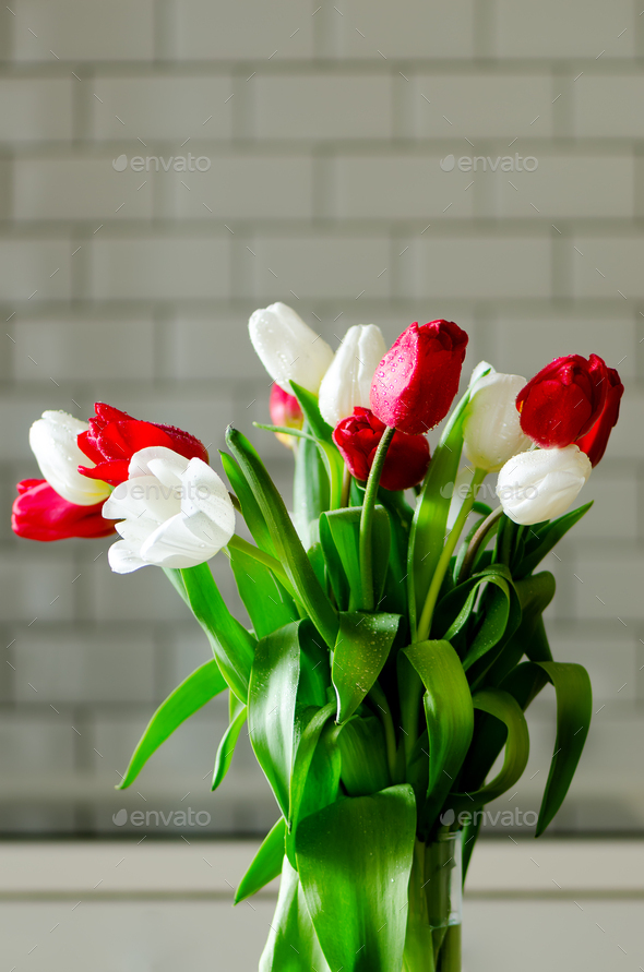 Fresh white and red tulips on kitchen background. Present from husband, man. Copyspace - Stock Photo - Images