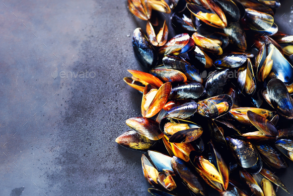 Mussels on stone concrete background. Top view, copy space. Square crop - Stock Photo - Images