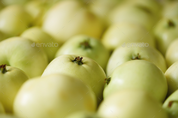 Top view of green apple. Background, concept, copy space, macro - Stock Photo - Images