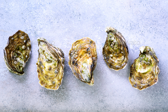 Fresh oysters on white, grey concrete stone background. Top view, copy space - Stock Photo - Images