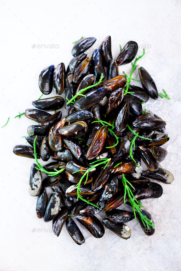 Boiled mussels with seaweed, sea plants on white stone concrete background. Top view, copy space - Stock Photo - Images